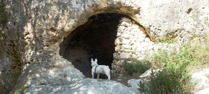 Sa cova Reial