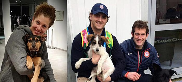 Los atletas, ángeles de la guarda de los perros de Sochi
