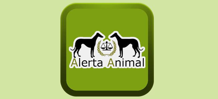 'Alerta Animal', la App que nos permite denunciar casos de maltrato animal