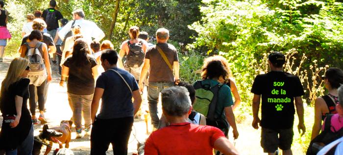 SOY DE LA MANADA: La magia de pasear en manada
