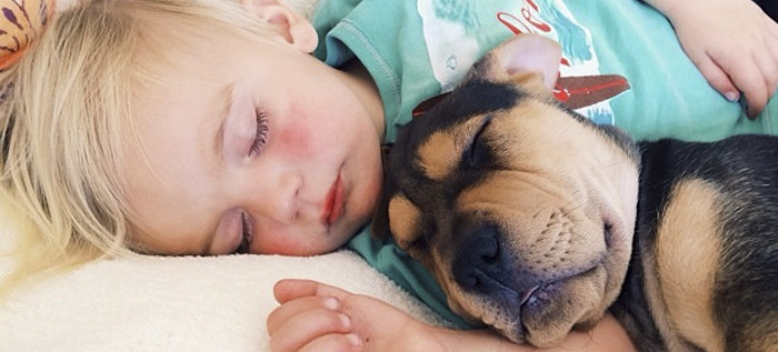 THEO & BEAU y su idilio con la siesta