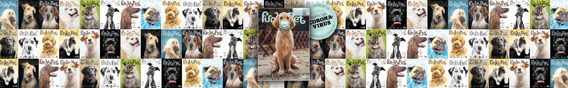 Funky Pet magazine, covid19