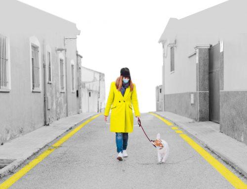 Coronavirus: los perros como salvoconducto